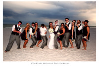 Newlyweds and Wedding Party